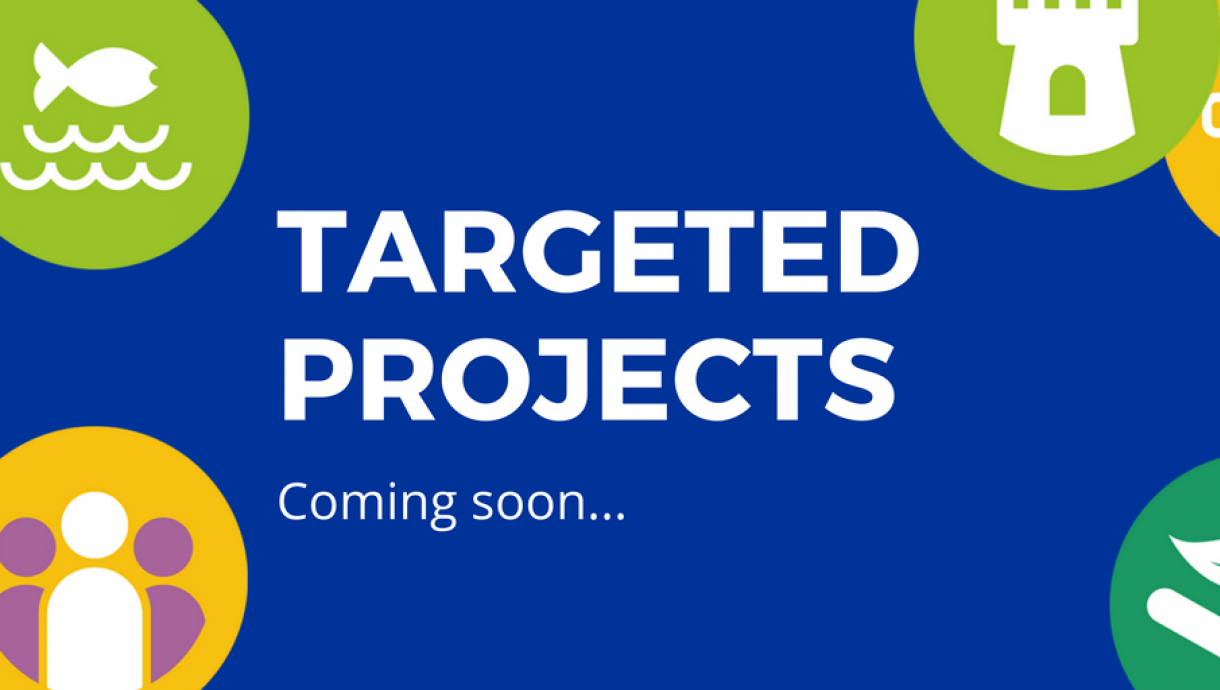 Targeted Projects2