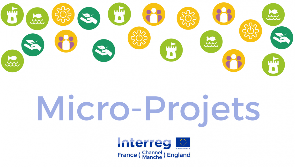 French Micro Projects Logo no edges2