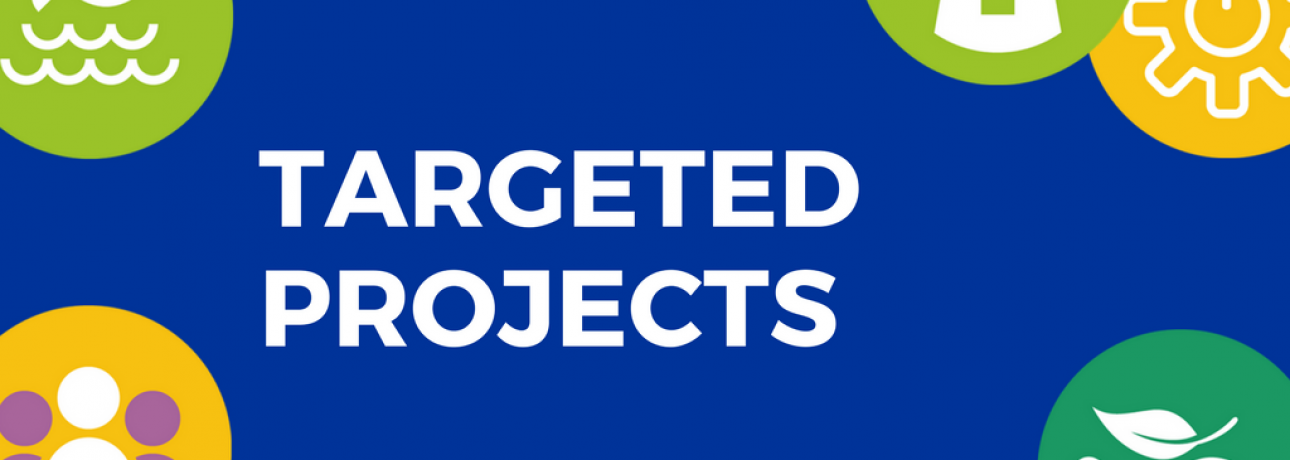 Targeted Projects 2