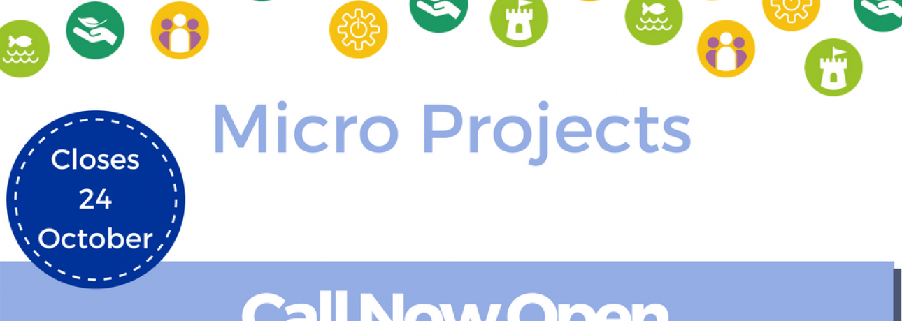Call open Micro Projects 1