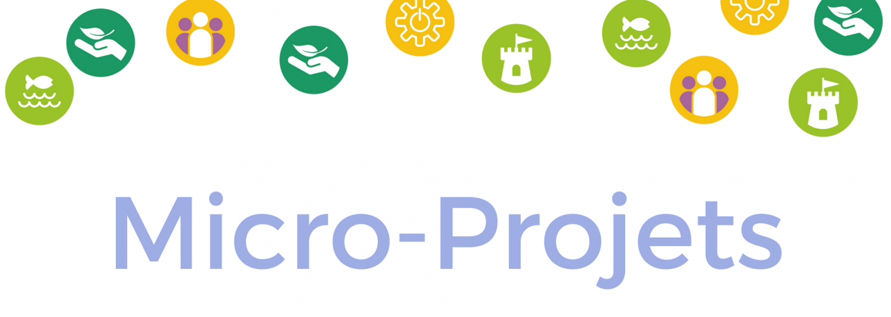 French-Micro-Projects-Logo-no-edges.png